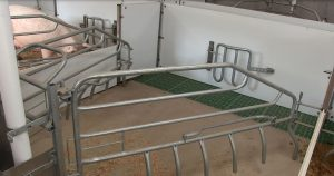 Farrowing pen setup