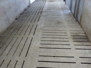 Schlegelhome Farms Inc center alleyway reno design had to use two different directions for flooring which is total slats