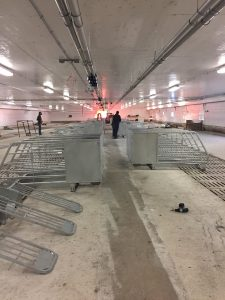 HyLife-Rosco Farm Gestation area equipment installation